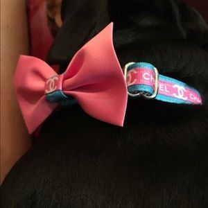 Accessories - Darling pooch couture :